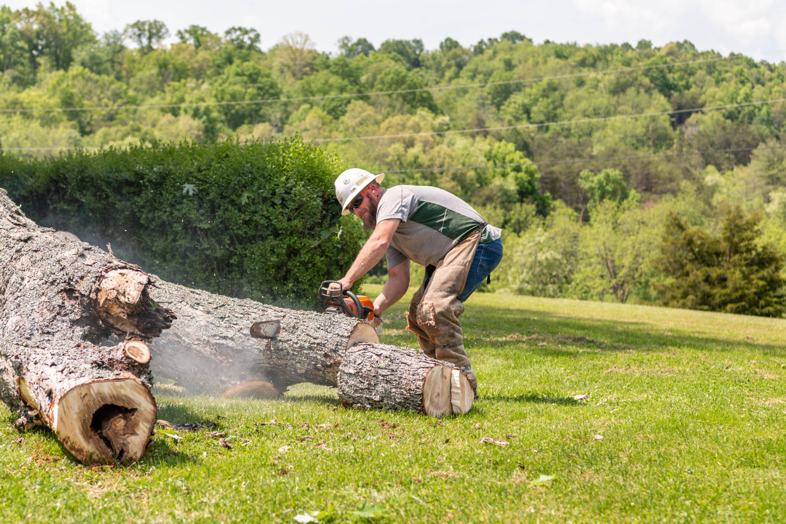 Cutting The Tree Into Smaller Pieces